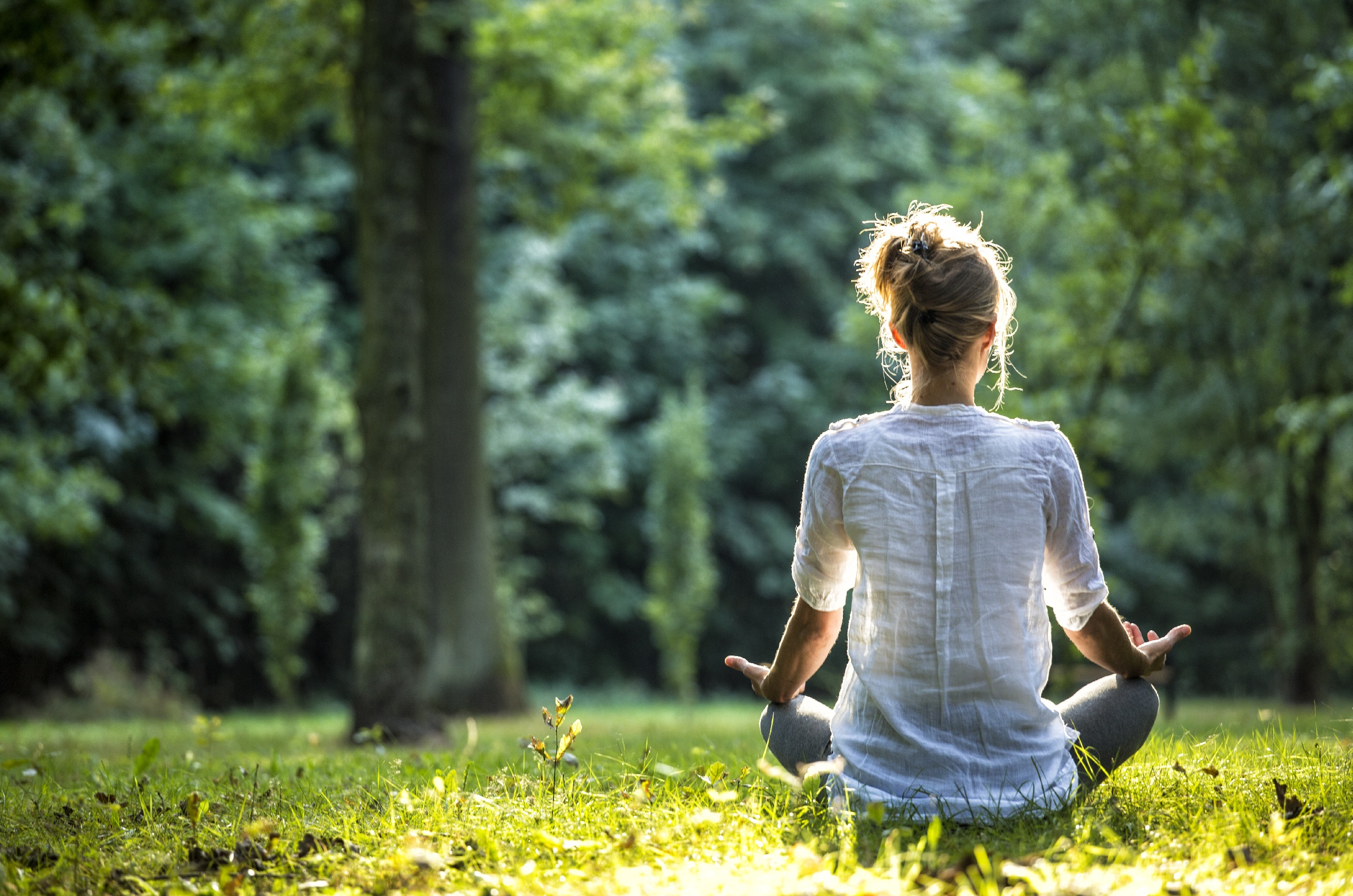 Meditating Meaning And Purpose In Our Life